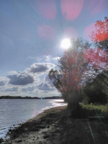 Présences de Lumière, à l'étang de la Provostière