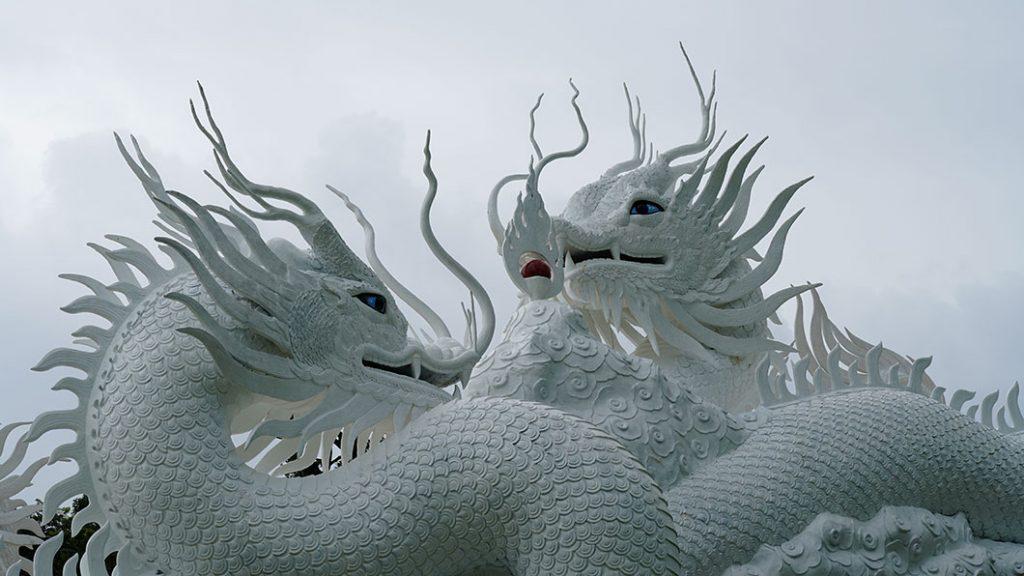 Dragons blancs