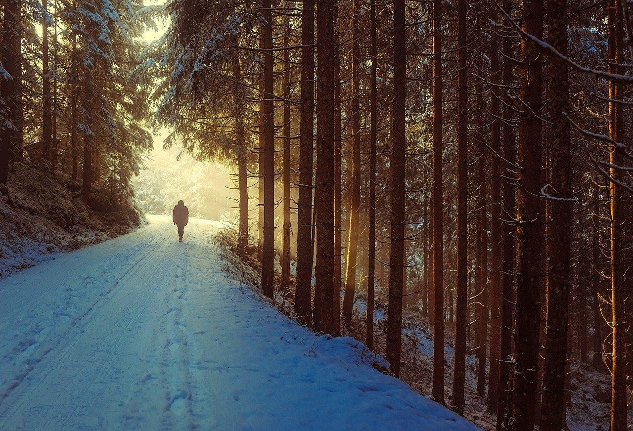 Cheminer seul, dans sa propre Vérité et Lumière