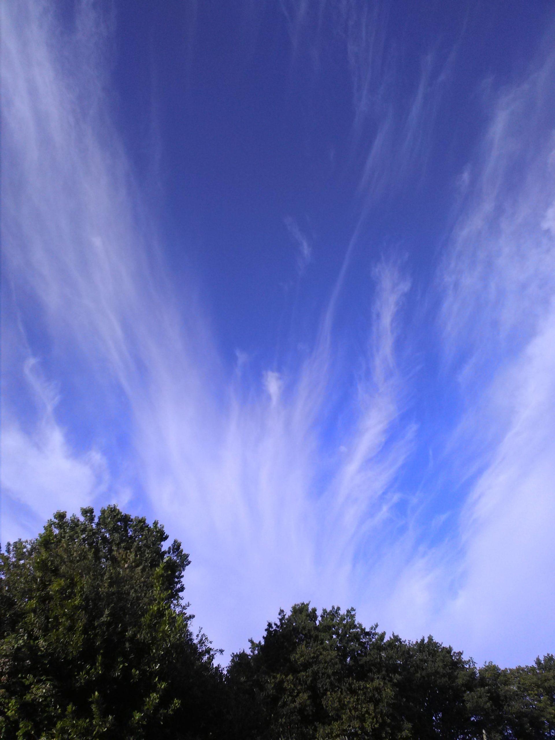 Anges et plumes, dans le ciel
